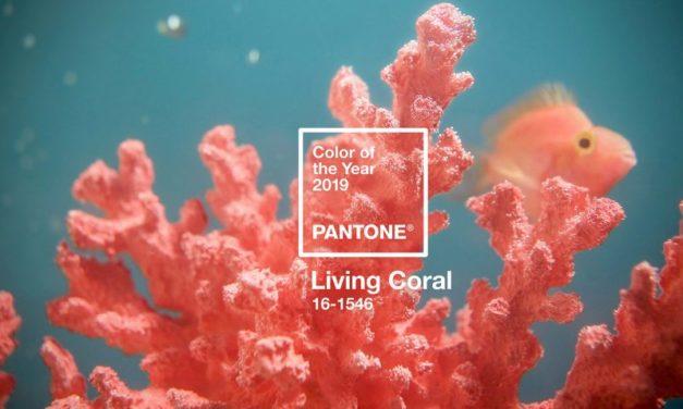 Living Coral et autres « Color of the Year »: l'imposture?
